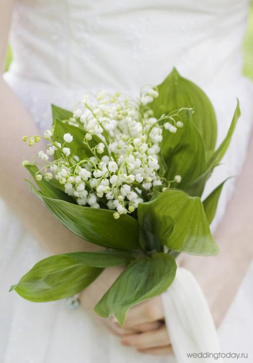 Фото ландышев цветы