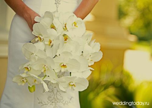 Свадебный букет из орхидей | Weddingtoday.ru